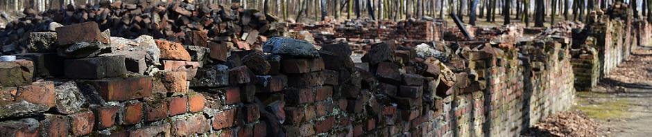 Les ruines du Krematorium V à Birkenau (photo Louise Macé - mars 2011)