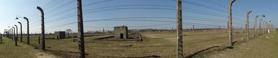 Au coeur de Birkenau (vue sur le secteur BII)