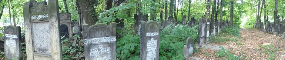 Dans le cimetière de Lodz